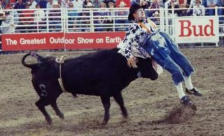 Rodeobullclown_29973